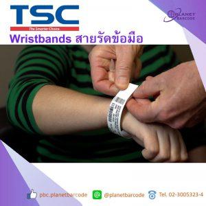 Wristbands สายรัดข้อมือ